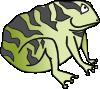 toad garden2 ocal