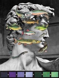 Give David a Fish