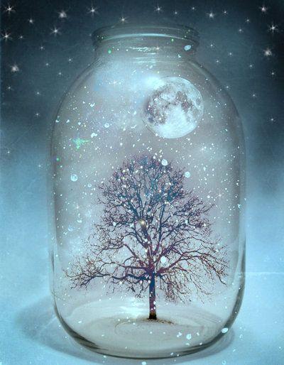 scene in a jar
